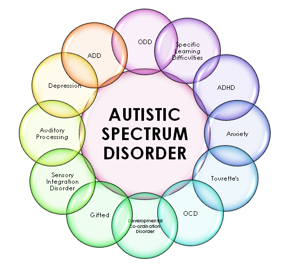 The 3 Biggest Misconceptions About Autism - tUG