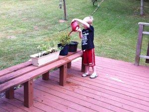 Tommy gardening