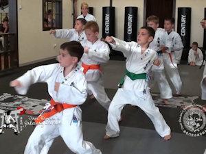 Dave Hansen's Gateway Karate