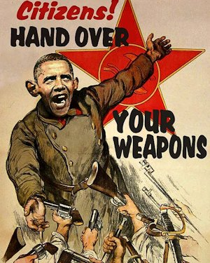 http://www.emagill.com/gallery/obama-gun-confiscation-poster.jpg
