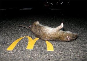 McDonalds Rat