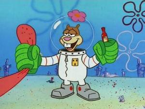 SpongeBob SquarePants: Karate Choppers