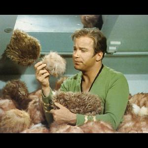 TOS: The Trouble with Tribbles